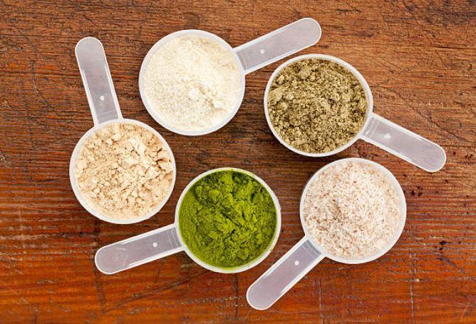 tipos batidos de proteínas