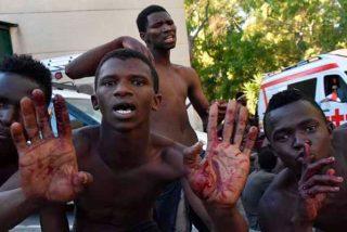 Más de 600 migrantes subsaharianos saltan la valla de Ceuta y entran en tromba en España