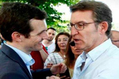 Un 'topo' del PP deja temblando a Pablo Casado insinuando los motivos de la renuncia de Feijóo a presidir el partido
