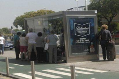 Cachondeo total en las redes sociales por lo que pasó en esta parada de autobús en Sevilla