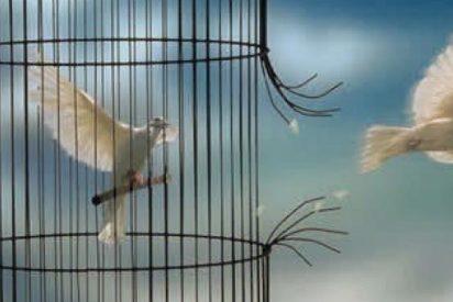 """""""Campamento Libertad"""", espacio de convivencia, comunicación y escucha en la prisión de Picassent"""