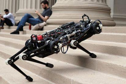 Este perro robot muestra su increíble equilibrio con varios ejercicios a ciegas