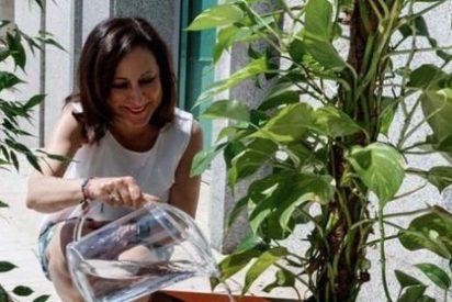 Margarita Robles se mete en un buen jardín y acaba regada a hachazos en Twitter