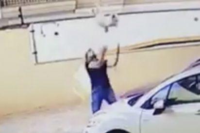 Este hombre salva a un perro cuando este caía desde un noveno piso