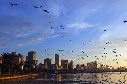 Aumenta el número de turistas españoles a Sudáfrica