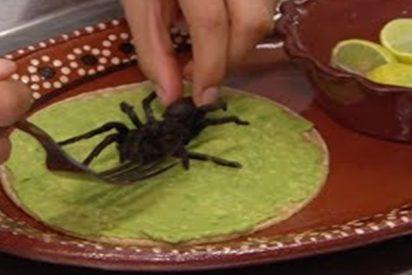 Con este taco de tarántula vencerás tu fobia