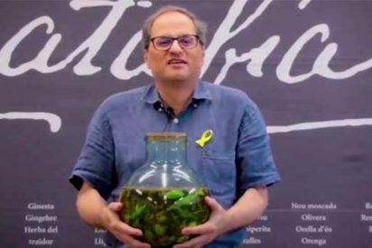 El fanático Quim Torra aparece en un vídeo agarrado a una garrafa de orujo separatista
