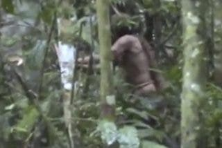 ¡IMPRESIONANTE!: Captan al único superviviente de una tribu indígena amazónica