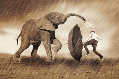 Con sólo un paraguas evita que le roben y da lo suyo al ladrón