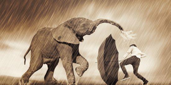Pronóstico del Tiempo: día de lluvia y paraguas este 22 de octubre de 2020