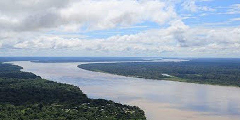 Descubren que la Amazonia podría mutar de sumidero a emisor de carbono por las sequías