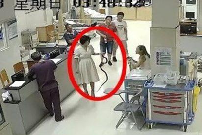 Esta china atrapa con sus manos la serpiente que la mordió y se va con ella al hospital