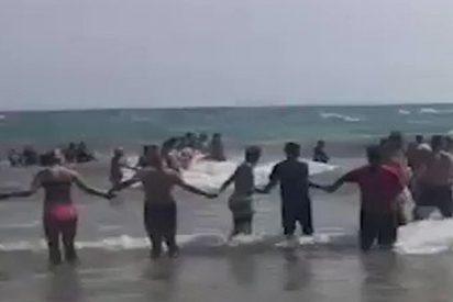 Así fueron las espontáneas cadenas humanas para salvar a los bañistas atrapados en las corrientes de un lago de EE.UU.