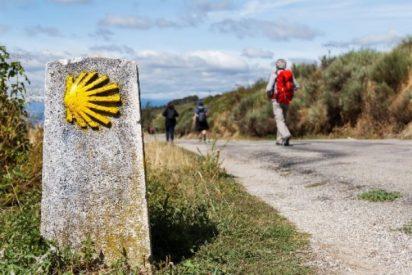 Comienzan las iniciativas por un Camino de Santiago más sostenible