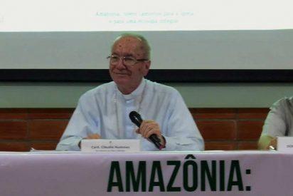 """Hummes: """"El Sínodo de la Amazonia no fue convocado para repetir lo que la Iglesia ya dice, sino para avanzar"""""""