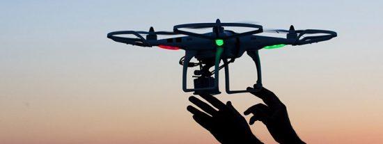 Esta tecnología española permite replantar hasta 100.000 árboles en un día con drones