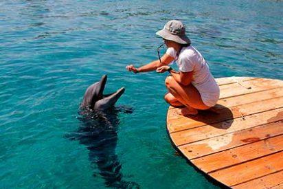 Eilat, disfruta del paraíso a orillas del Mar Rojo