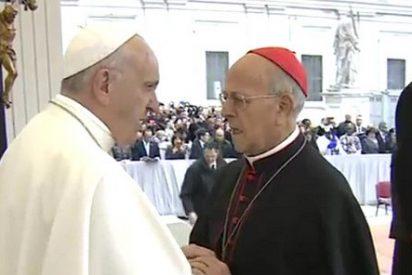 "Blázquez, al Papa: ""Santo Padre, no está solo"""
