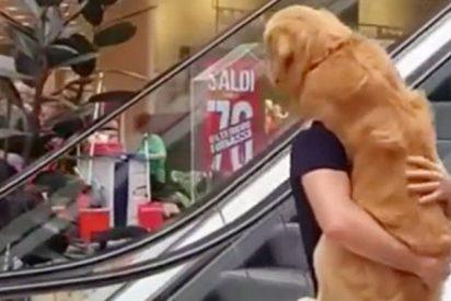 Este hombre carga 'como a un bebé' a su perro asustado para subir una escalera mecánica