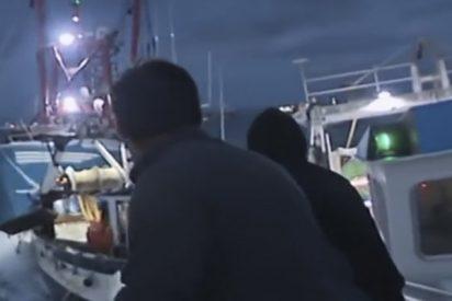 """""""La guerra del marisco"""": Así embiste este pesquero británico a uno francés"""