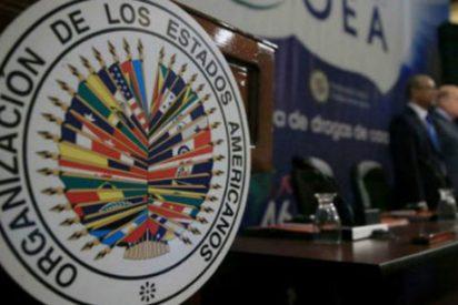La Iglesia agradece a la OEA la creación de un 'grupo de trabajo' sobre la crisis en Nicaragua