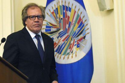 """Luís Almagro, secretario general de la OEA: """"El éxodo venezolano es el más grande de la historia del hemisferio occidental"""""""