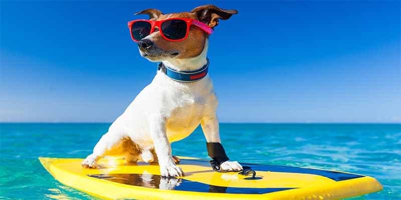 ¿Sabías que dos millones de españoles se endeudan para poder irse de vacaciones en verano?