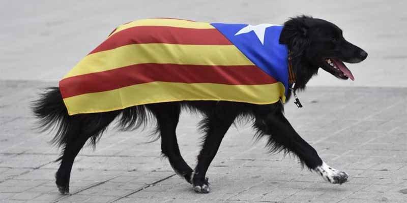 """Hace furor la campaña en Internet para 'saludar' al restaurante que sirve """"guardia civil andaluz a la brasa"""""""