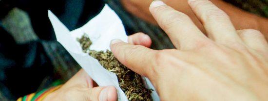 Estas son las consecuencias neurobiológicas del consumo de cannabis en adolescentes