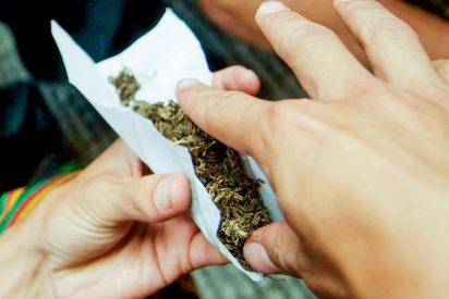 Demuestran que el consumo de marihuana, o de drogas derivadas de la misma, afectan seriamente a la memoria