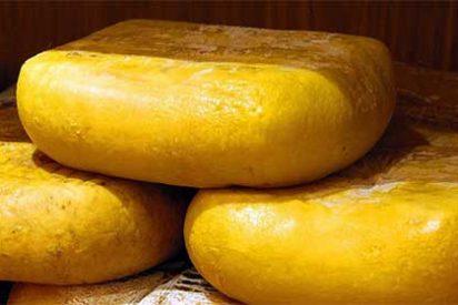 Descubre la Ruta del queso de Mahón