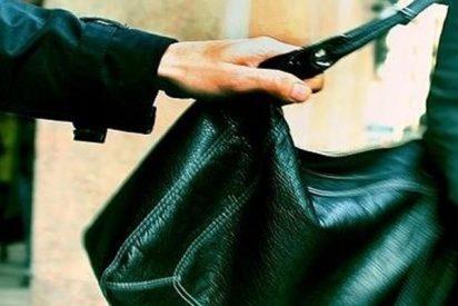 """Así le roban el bolso mientras hace el viral """"In My Feelings Challenge"""""""