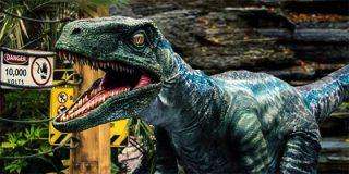 """¿Te apetece un """"cara a cara"""" con un Velociraptor?"""
