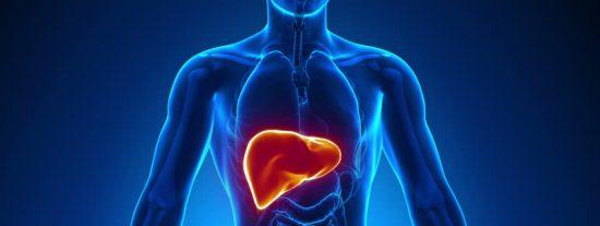 Los 10 mejores alimentos para cuidar tu hígado