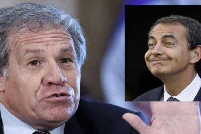 """El secretario general de la OEA pone tibio al socialista Zapatero: """"No sea imbécil sobre Venezuela"""""""