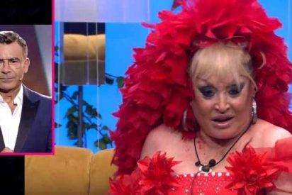 'Gran Hermano VIP': el show arranca con desnudos, broncas, koalas y avestruces