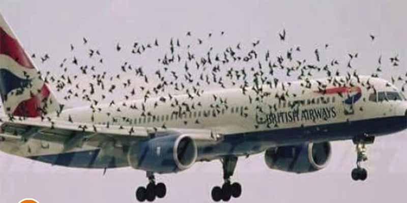 Un fallo informático en British Airways causa el caos en Heathrow y varios aeropuertos del mundo