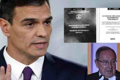 Pedro Sánchez también plagió en 'su' tesis al presidente de Freixenet