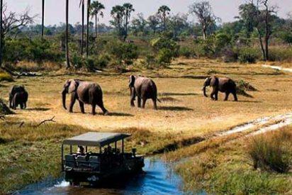 Todo lo que debes saber si vas a viajar a Botsuana