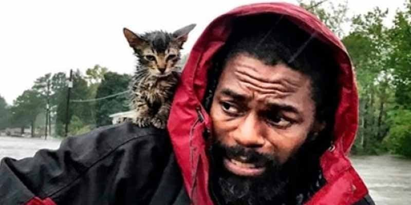 Vídeo: 'Sobreviviente' el gatito con suerte que burló al huracán Florence y a la muerte
