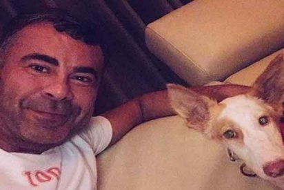 A falta de novio, Jorge Javier vuelca todo su amor en 'Cata', su nueva mejor amiga