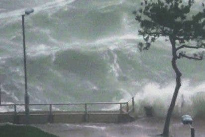 Mangkhut: El tifón más violento del año