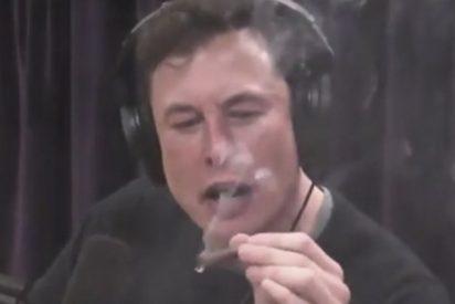 ¿Sabías que Elon Musk está convencido de que vivimos en un «matrix»?