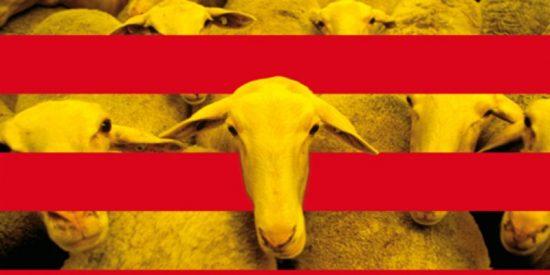 El apoyo a la independencia cae en Cataluña a su nivel más bajo en dos años