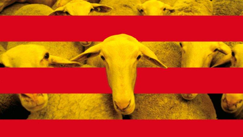 Un colegio catalán pide a los padres que vayan a las reuniones con traductor... y se muerde la lengua