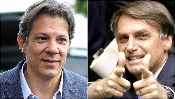 Jair Bolsonaro y Fernando Haddad quedarán empatados en una eventual segunda vuelta presidencial