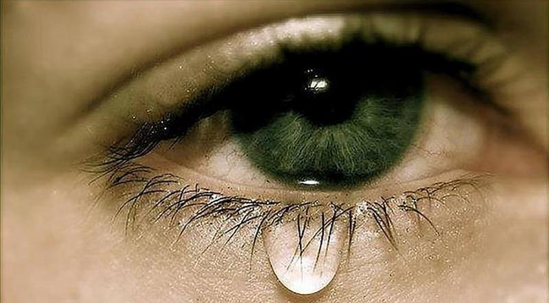 ¡PERDÓN! El dolor de las víctimas y sus familias es también nuestro dolor