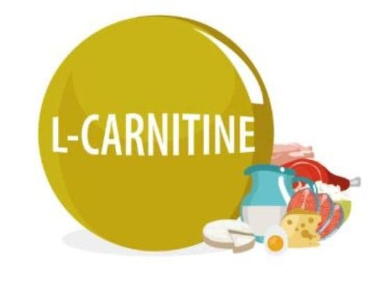 L - Carnitina