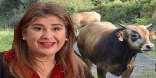 Tremendo 'zasca' a Lucía Etxebarria por la gilipollez que suelta sobre la tesis de Pedro Sánchez
