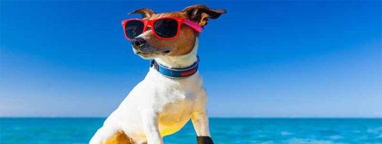 Nuevas costumbres: Tres de cada cuatro españoles guarda días de vacaciones para el resto del año